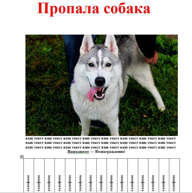 Шаблон объявления о пропаже собаки скачать